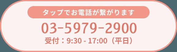 電話番号 03-6256-9051 受付時間 9:30~17:30